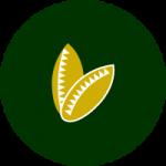 semillas-para-cespedes