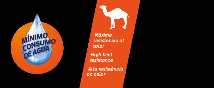 logos-sahara