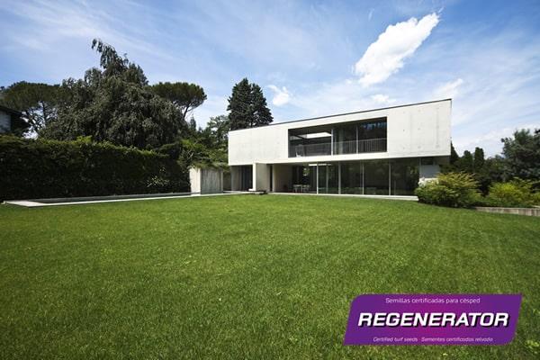 Cesped _Regenerator