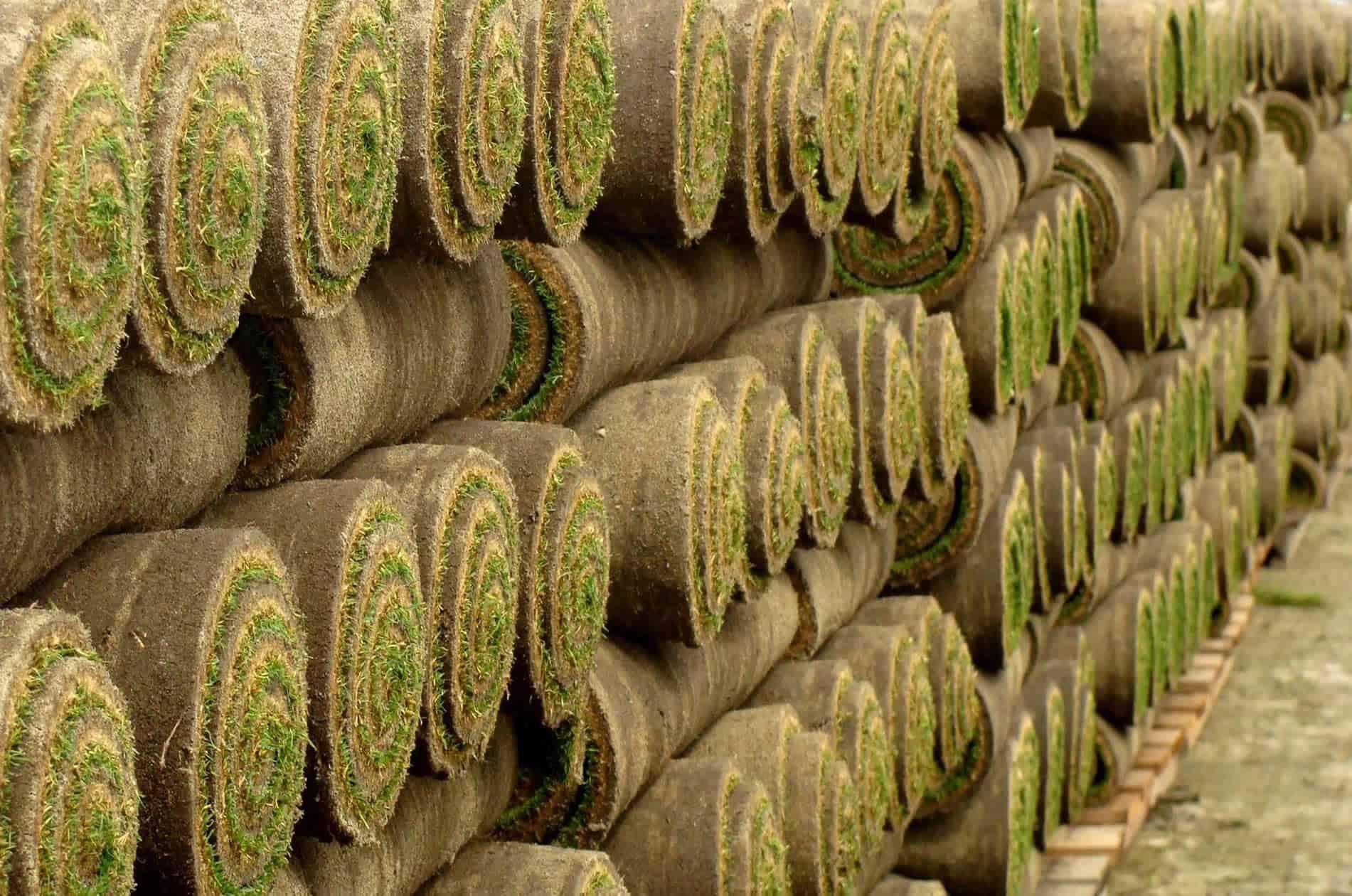 Rollos de tepe de césped natural Zulueta