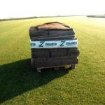 Nueva cosecha de tepe de césped 2016*****