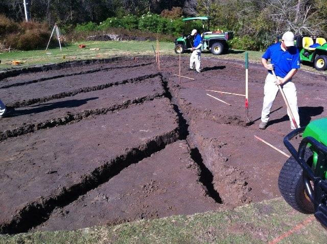 Tipos de suelo en el césped  Cuales son apropiados