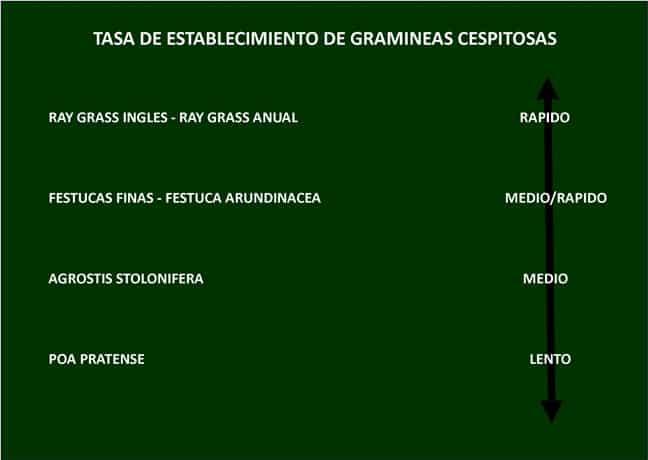 tasa_crecimiento_gramineas_cespitosas
