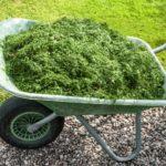 Aprovechar los recortes del césped: Mulching y Compost