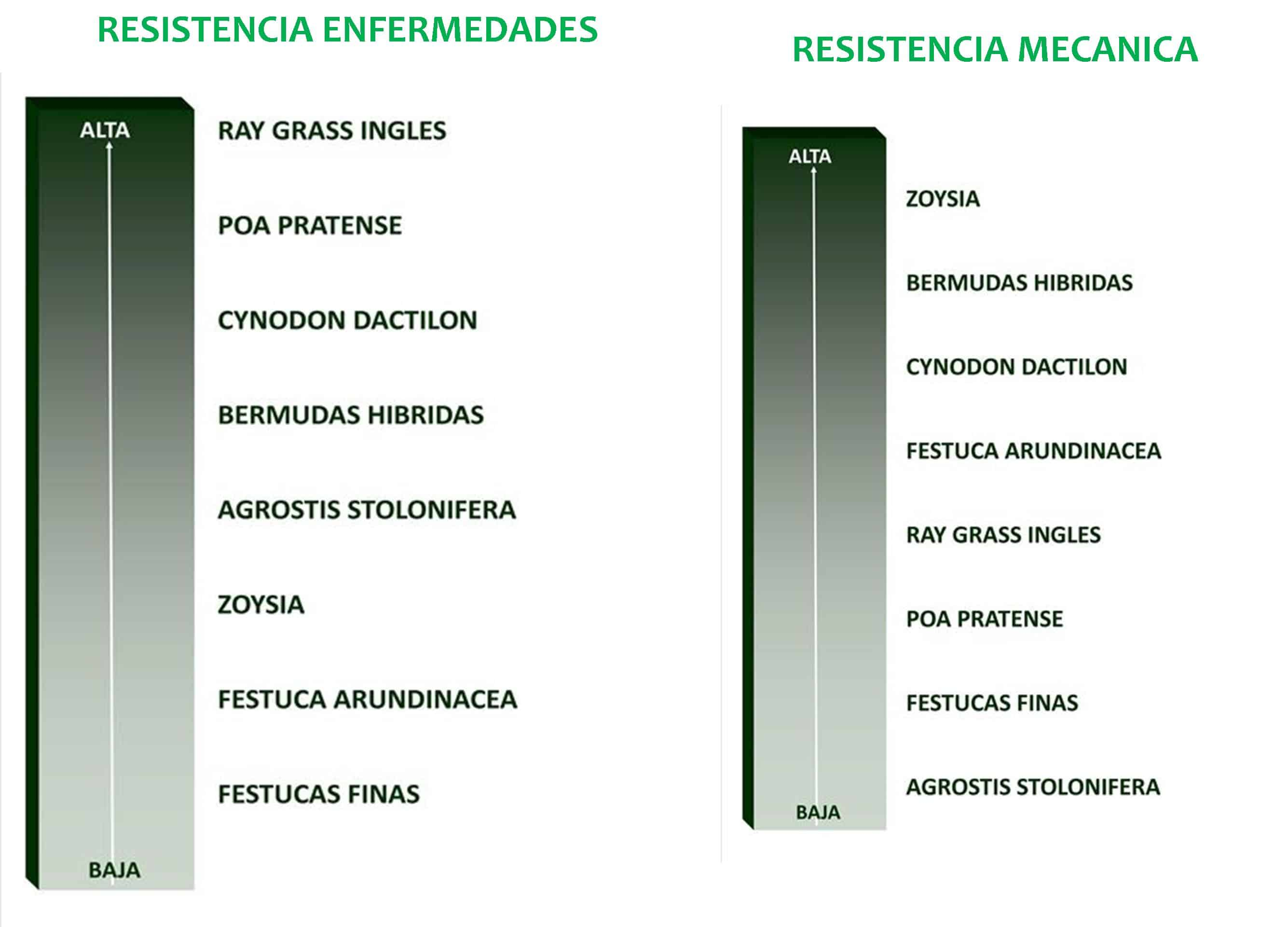 ENFERM_MECANICA