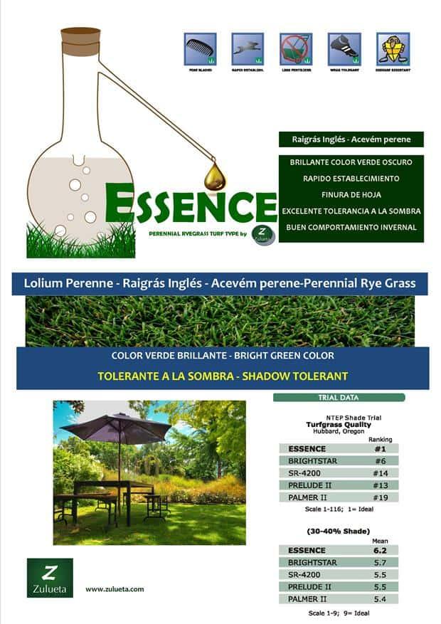 ESSENCE_web