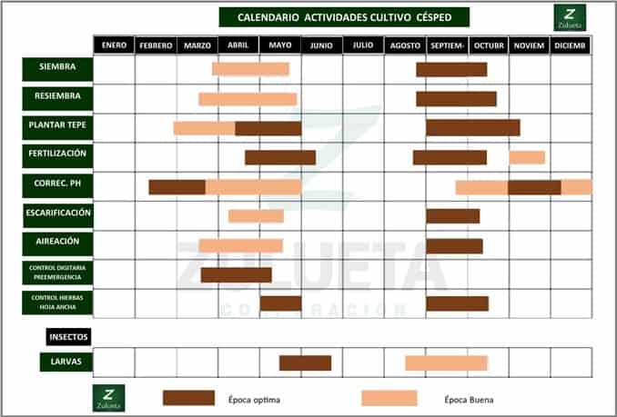 calendario_cesped_zulueta_