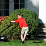 Un niño de 11 años siega el césped en la Casa Blanca.